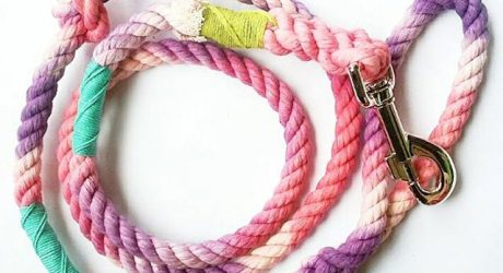 Colorful, Organic Rope Leashes & Collars from Haus of Hound
