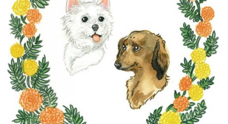 Custom Illustrated Pet Portraits by Lauren Moyer