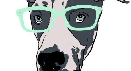 Custom Pet Portraits by Melissa Carroll