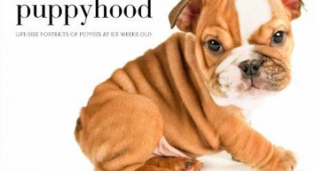 <i>Puppyhood</i>: A Photo Book by J. Nichole Smith