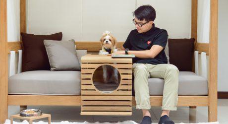 Pet-Friendly Indoor/Outdoor Daybed from Deesawat