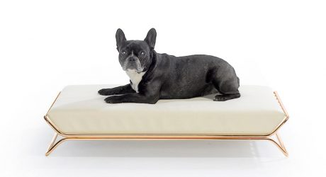 Modern Dog Beds and Bowls from designwelove