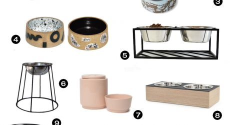 Dog Milk Holiday Gift Guide: Bowls, Feeders, and Treat Jars
