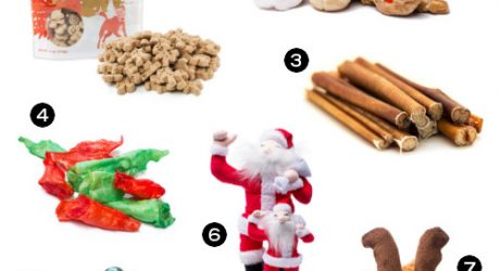 Discounted Holiday Dog Treats, Toys, and More from Doggyloot