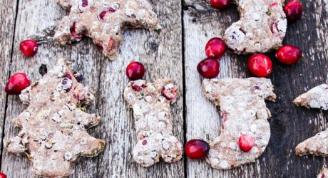 Dog-I-Y: 12 Easy Holiday Dog Treat Recipes