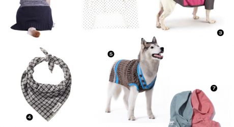 Dog Milk Holiday Gift Guide: 19 Stylish Clothing Gifts for Dogs