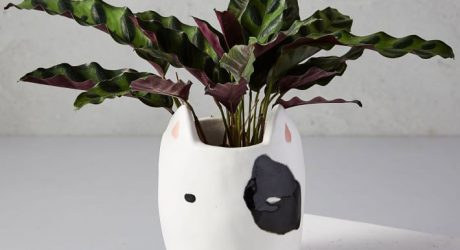 Ceramic Dog Planter from West Elm
