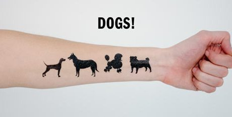 Dog Tattlys!