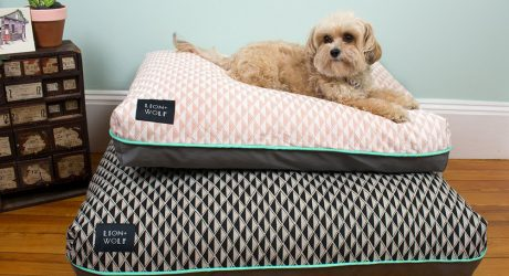 Dog Milk Holiday Gift Guide: Beds and Blankets
