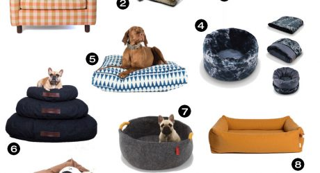 Dog Milk Holiday Gift Guide: 19 Cozy Dog Beds and Blankets