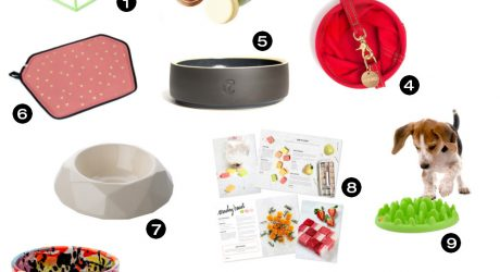 Dog Milk Holiday Gift Guide: 21 Modern Dog Bowls, Feeders, and Accessories