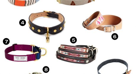 Dog Milk Holiday Gift Guide: 20 Awesome Dog Collars, Leashes, and Harnesses