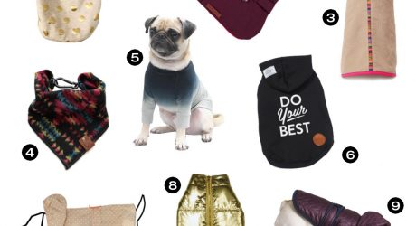 Dog Milk Holiday Gift Guide: Clothing & Accessories