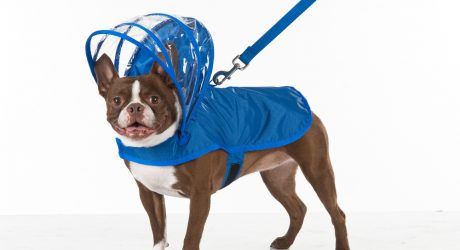 Adjustable Hood Dog Raincoats by Push Pushi