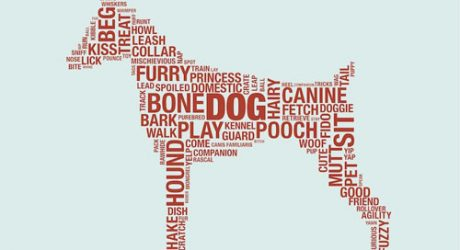 Dog Dictionary Print