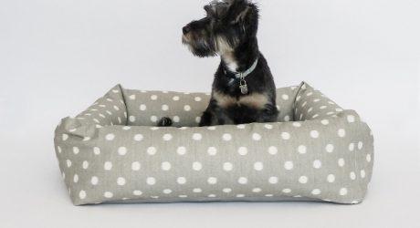 Modern Dog Beds from Fitz + Fellow