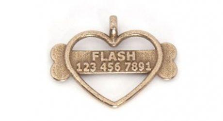 Flash Gordon Designs