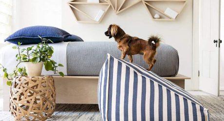 Wamp Pet Ramp by Fresh American