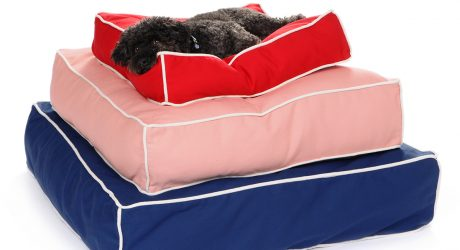 Giveaway: Win a Modern Dog Bed from Waggo
