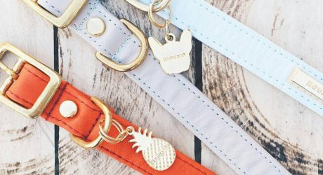 Dog Charms and Tags from HOUND