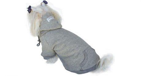 Basic Dog Hoodie