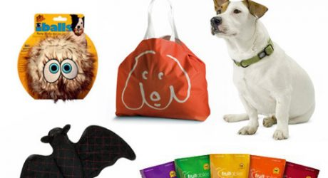 Halloween Goodie Bag Giveaway from Fun Time Dog Shop