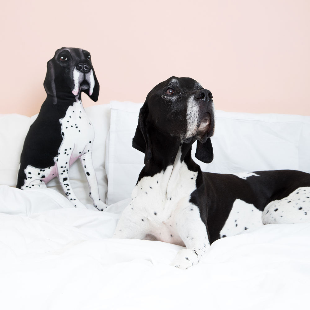 Custom Pet Portrait Pillows by Helen Penny