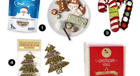 Dog Milk Holiday Gift Guide: 15 Festive and Tasty Treats for Dogs