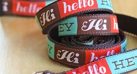 Dog Collars and Leashes by Jessica Jones