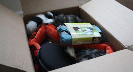 Kyjen Squeak Toys