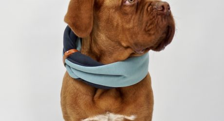 Stylish Dog Neck Warmers from Labbvenn