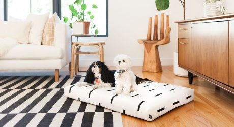Stylish Designer Dog Beds From Laylo Pets