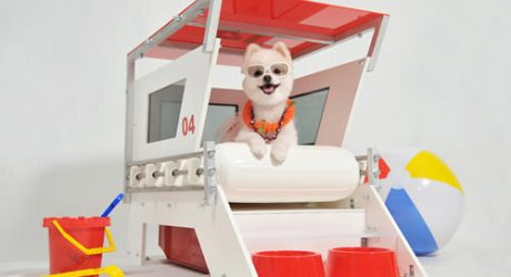 Lifeguard Doghouse by Unleash Studio