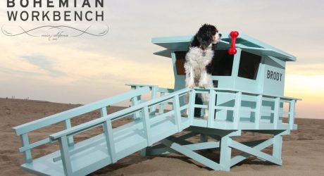 Lifeguard Stand Dog House by Bohemian Workbench