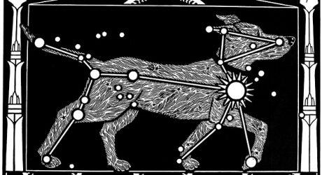 Linocut Dog Prints by Thomas Rude