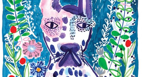 Dog Portraits and Illustration by Lisa Cinar