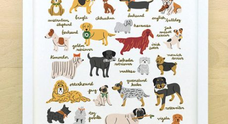 Man's Best Friend Dog Alphabet Poster from Little Low Studio