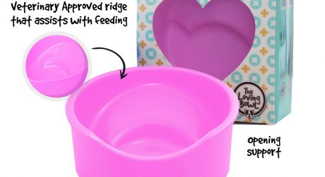 The Loving Bowl Ergonomic Feeder