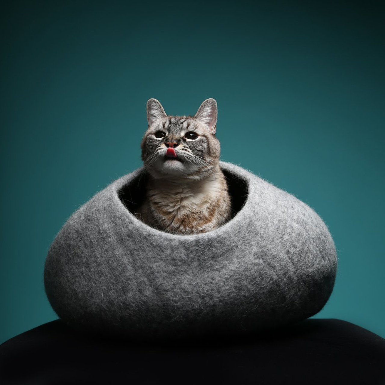 Cozy Felt Cat Caves From Max-Bone