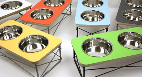 Mid-Century Modern Raised Pet Feeders by Modern Mews