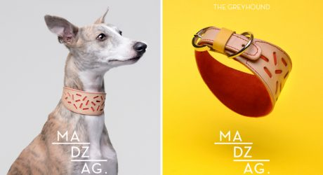 Bauhaus-Inspired Dog Collars & Leashes by MADZAG