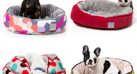 Modern Dog Beds from FuzzYard