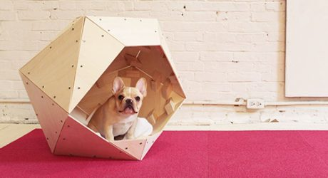 DIY Geometric Wooden Dog House