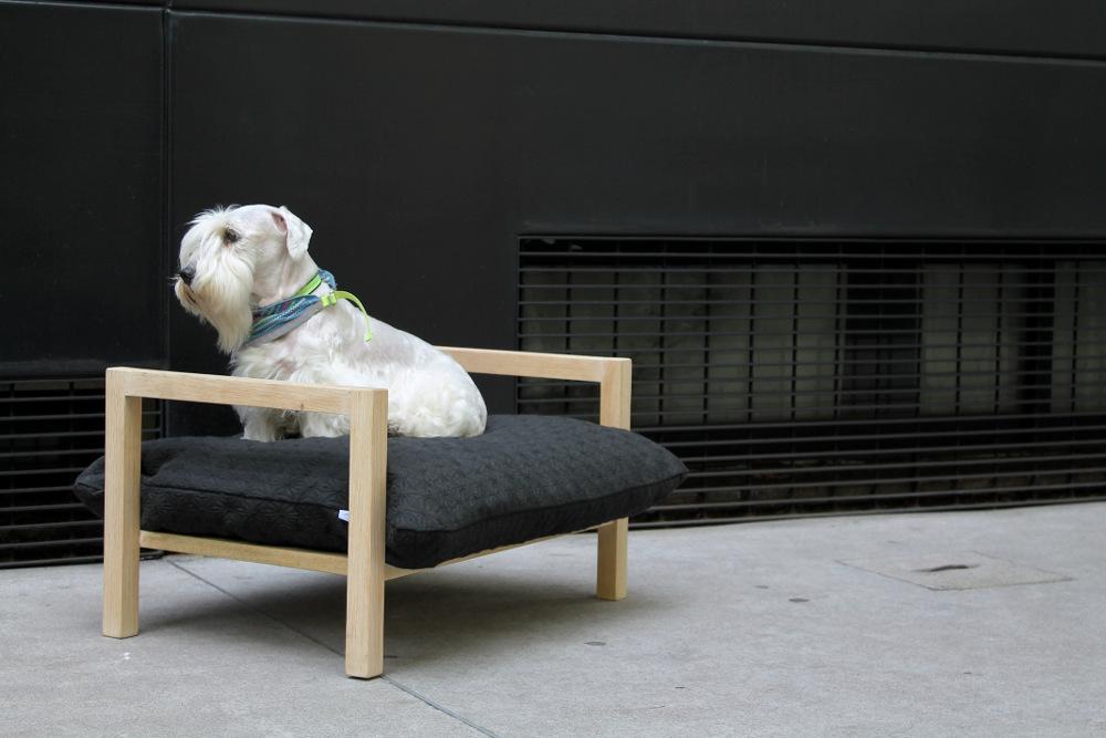 dog hat bed