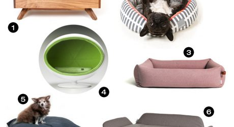 Dog Milk Holiday Gift Guide: 18 Cozy Beds for Dogs