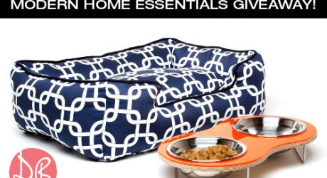 Modern Dog Bed and Feeder Giveaway with Domestic Beast