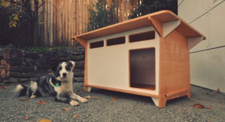 Modern Indoor/Outdoor Dog House from Studio Shed