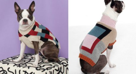 New Dog Sweaters from Dusen Dusen