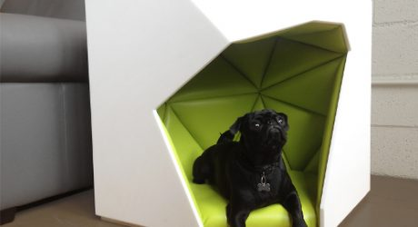 Geodog Dog House by Laser Lab Studio