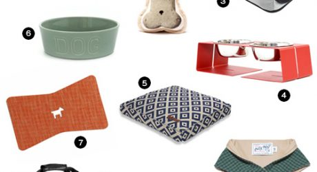 Modern Dog Accessories from Petswag